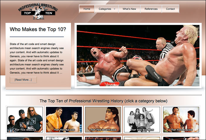 wrestlingtopten.com